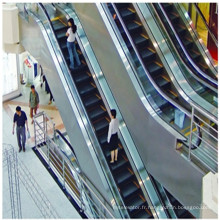 Escalator extérieur résidentiel électrique bon marché de 600mm 0.5m / S