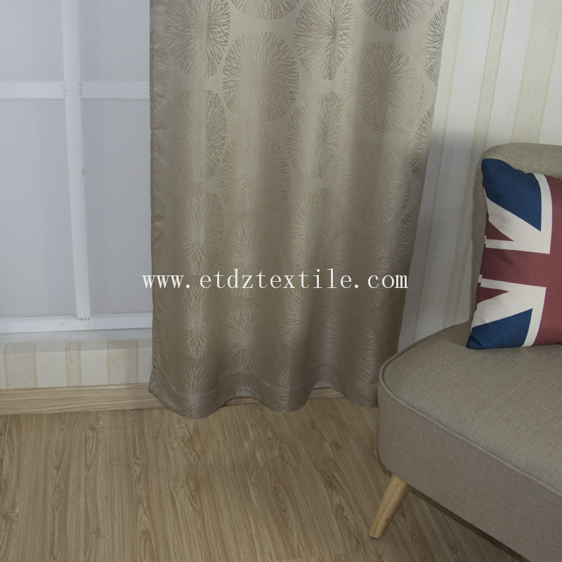 Home Curtain WZQ162