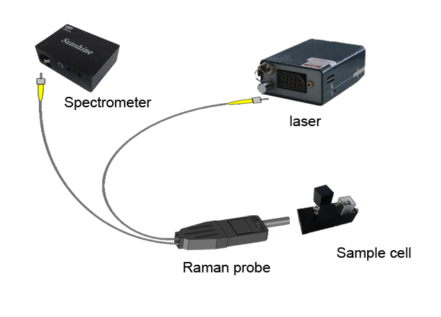 Raman spectrum measurement device