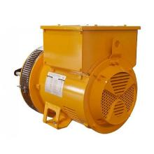 Synchronous Lower Voltage Generator Parts