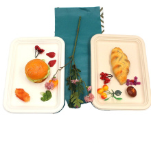 Eco-Friendly Natural Bagasse Rectangular Plates Serving Trays Made From Sugarcane Fibers