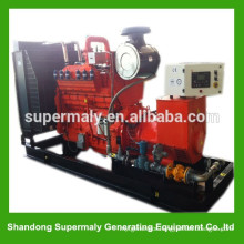 Reliable quality gas electric generator with world famous brand