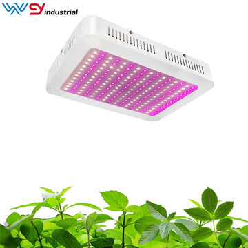 led coltiva le luci quantum board 1000w veg flowers