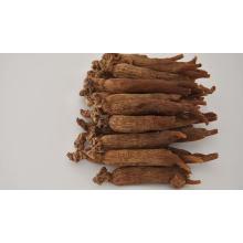 Hong Shen GMP Manufacturer Bulk Natural Organic Korean Dried Red Ginseng Root