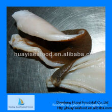 High quality geoduck clam