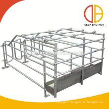 New Design Gestation Stall