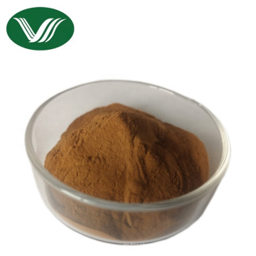 Pure Natural Lingzhi Extract 30% Polysaccharides Ganoderma Lucidum Extract Powder