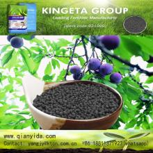 Hot sale Organic carbon based Humic Acid Fertilizer