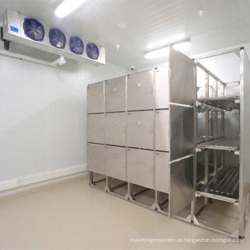 Professioneller gefrorener abkühlender Raum für Nahrung