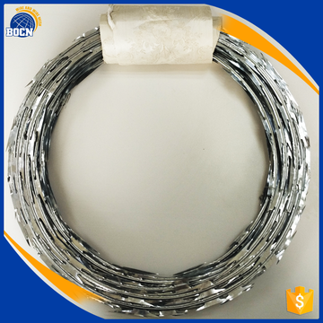 PVC Coated Razor Barbed Wire with high quality