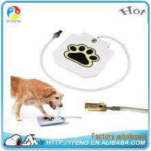 Neue Produkte Innovatives Produkt Dog Water Fountain