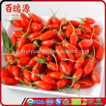 Good quality goji berry 160/180/220/280