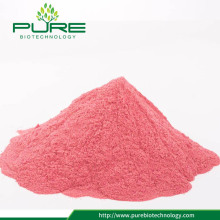 100% Natural Fruit Cranberry Juice Powder