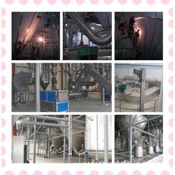Ginkgo Biloba Extract Spray Dryer