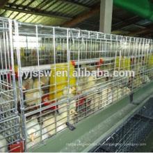 Fournisseurs de haute qualité Cage poulailler en Chine