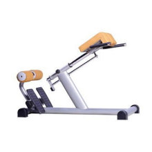 Ce Approved Gym Gebrauchte Commercial Roman Stuhl