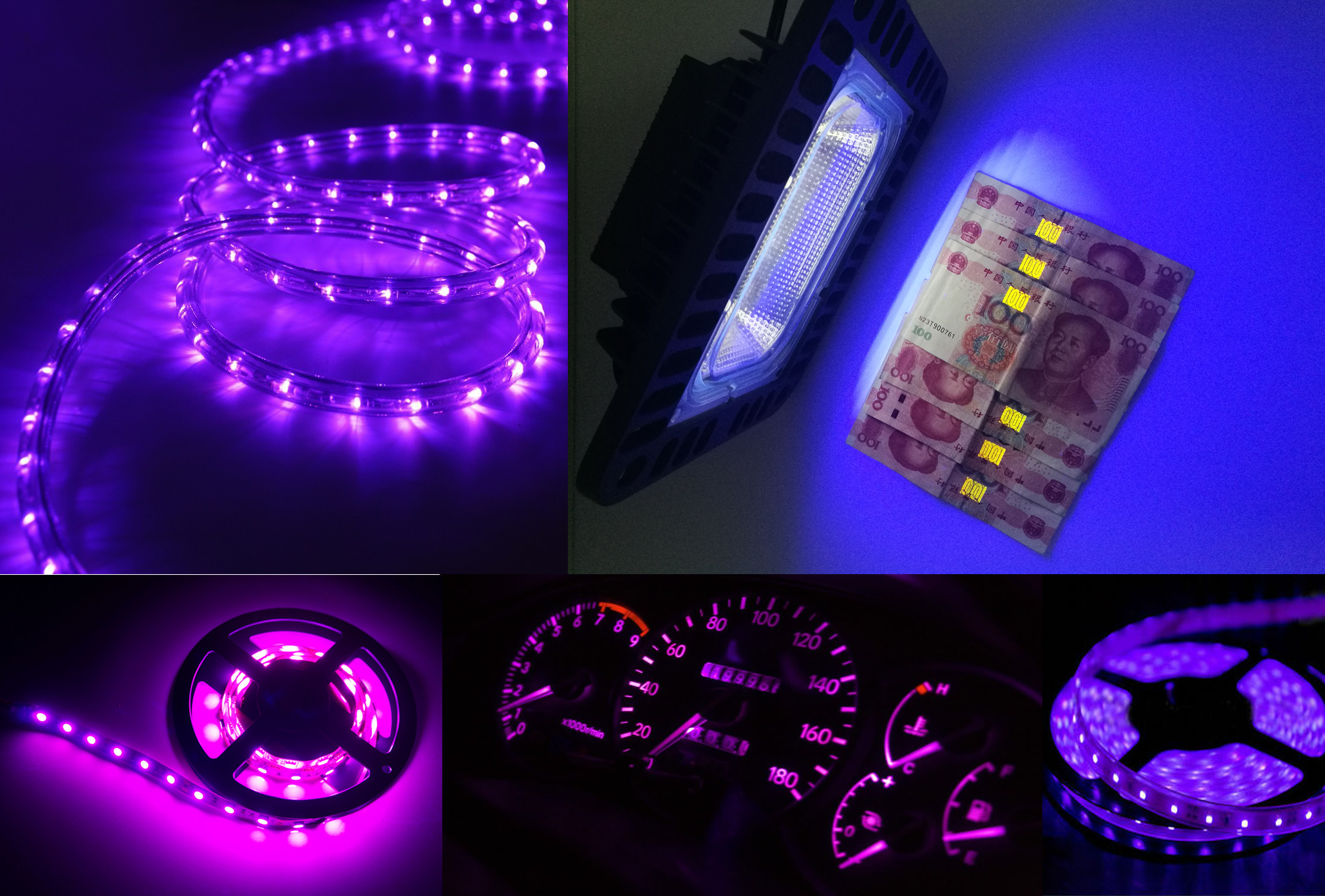 PURPLE LED