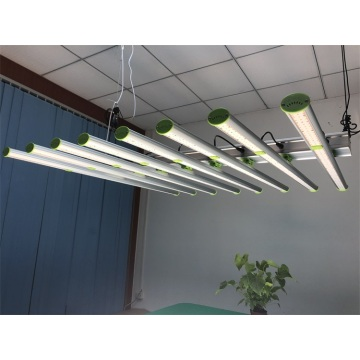 Grow Light 600 watts hjemmeplantning