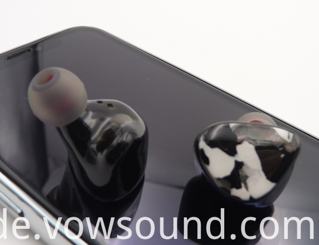 Hifi True Wireless Earphone