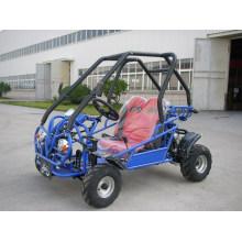 CVT Four Wheeler Kandi Buggy Go Kart for Kid (KD 49FM5)