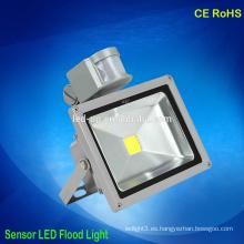 Sensor de movimiento de Zhongshan 30w llevó la luz de inundación 2 años de garantía al aire libre led jardín luz