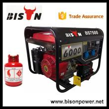 BISON(CHINA)Golden Power 6.5kva LPG Generator with Best Price
