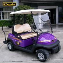48V 2 Sitzer Trojan Batterie elektrische Golf Buggy Auto benutzerdefinierte Minigolfwagen zum Verkauf