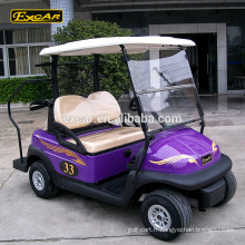 48V 2 places Trojan batterie électrique voiture de golf buggy personnalisé mini golf chariot à vendre