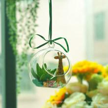 Handgemachtes kreatives Pflanzen-hängendes Glas