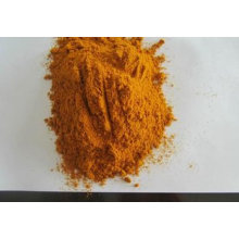 Poudre de curcuma de haute qualité pour l'exportation