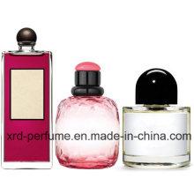 O serviço do OEM personalizou o perfume e o perfume de vidro