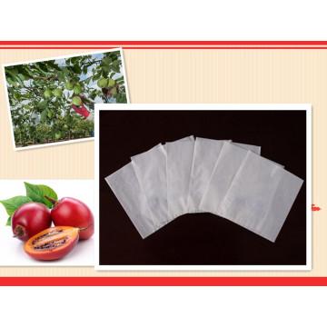 Insecte résistant aux intempéries, sac de culture de mangue de papier environnemental de Prevetnion chimique fabriqué en Chine