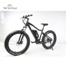 Livelytrip que monta a bicicleta elétrica do mountaion da neve gorda barata do pneu