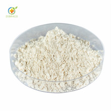 Organic Mung Bean Protein Powder
