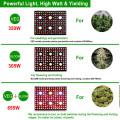 Plantas de interior com lâmpada LED de espectro completo