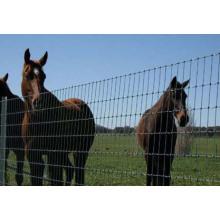 O melhor preço galvanizou os painéis usados pesados da cerca do gado, cerca do gado, usada