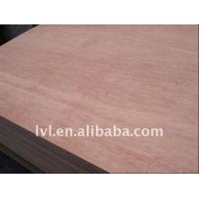 Contrachapado de madera dura bintangor