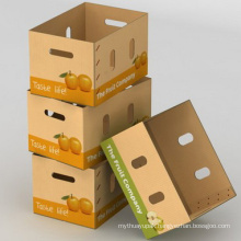Waxed Corrugated Carton with Custom Print Logo or Mark
