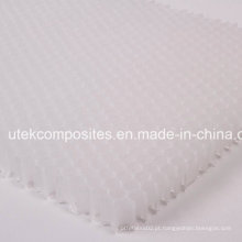 Espessura 17mm PP Núcleo Honeycomb para materiais de núcleo FRP
