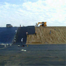 Eco Friendly Waterproof HDPE Geomembrane for Tank