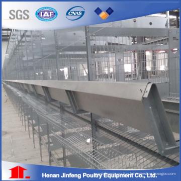 Cage à volailles H Type Poultry Farm pour Henhouse