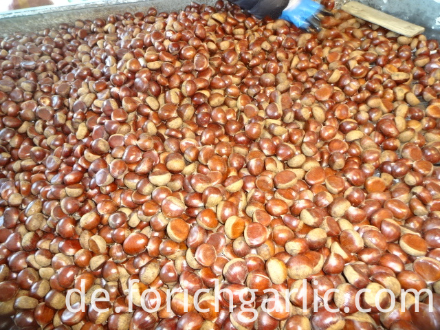 Best Quality New Crop Chestnut