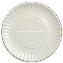 10-Zoll-Melamin-Picknick-Platte (PT1023)