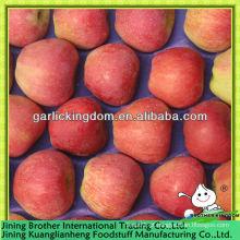 Fábrica de maçã estrela vermelha