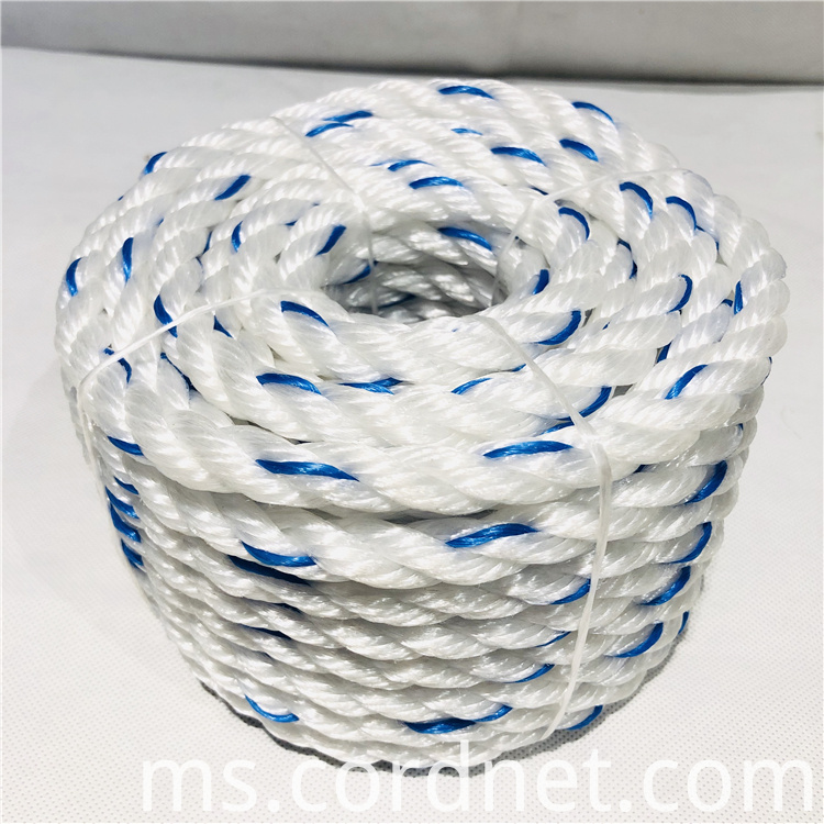 White With Blue Pp Multifilament Rope 3