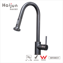 Haijun Export Quality Products cUpc Warranty Thermostatic Kitchen Sink Faucet