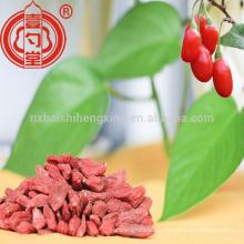 Salud fruta Ningxia zhongning baja pesticida seca baya de goji con mucha vitamina C