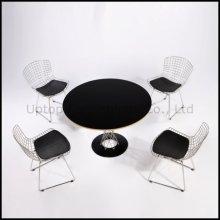 Конференц-зал реплики кресло bertoia провод Ногучи стол (СП-CT392)