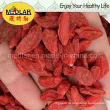 Mispel Red Goji Chinesische Wolfberry