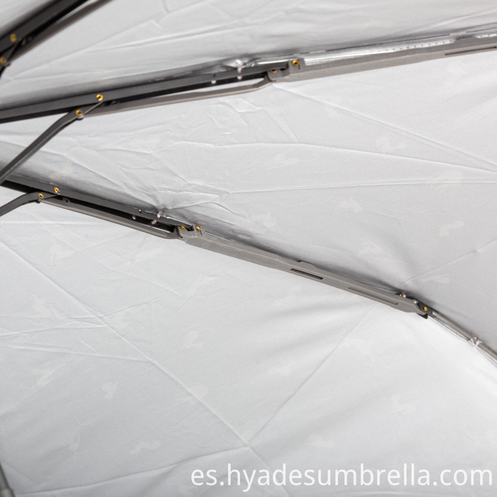 Female Umbrella